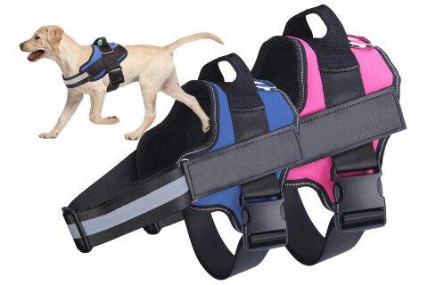Povodac za pse SafeWalk, plava i roze boja
